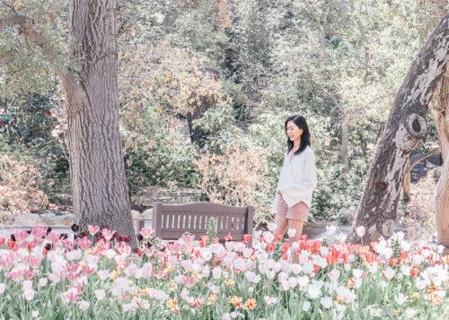 Descanso Gardens Los Angeles California