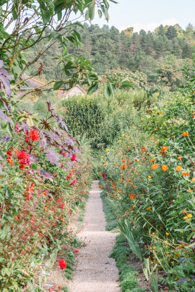 Flower Garden Path in Monet's Garden in Giverny France
