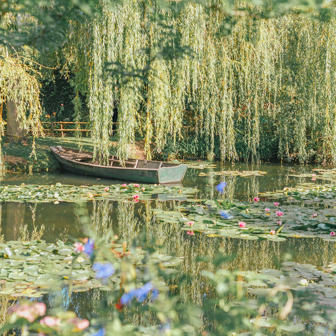 Wood Board and Water Lilies at Monet's Garden