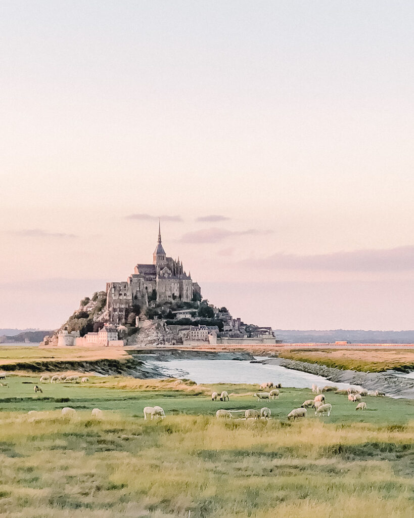 Dusk with Mont St Michel in the background and grazing sheep in foreground