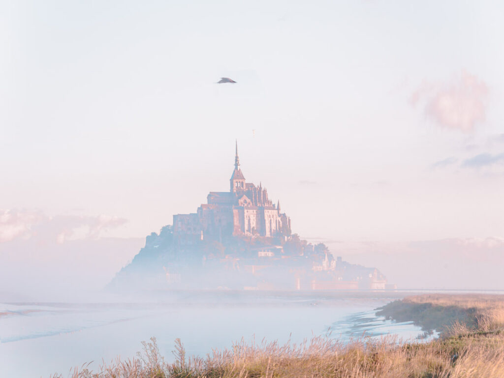 Bird over Mont Saint Michel Abbey