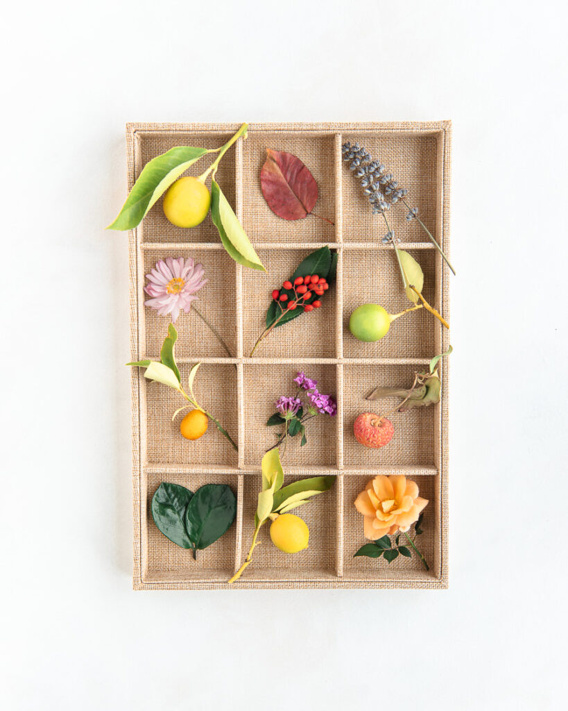 tray filled with flowers, fruit, leaves, berries