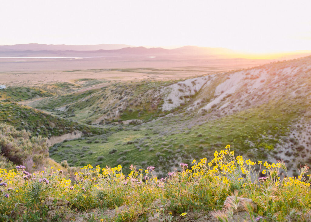 Sunset from hill at Carrizo Plain