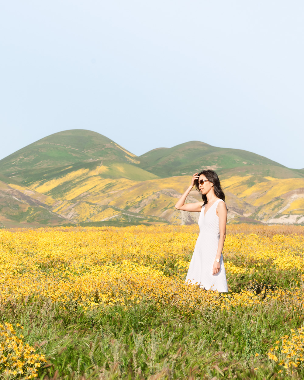Superbloom at the Carrizo Plain