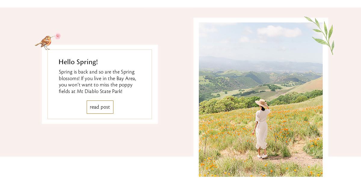Spring poppy fields at Mt Diablo State Park