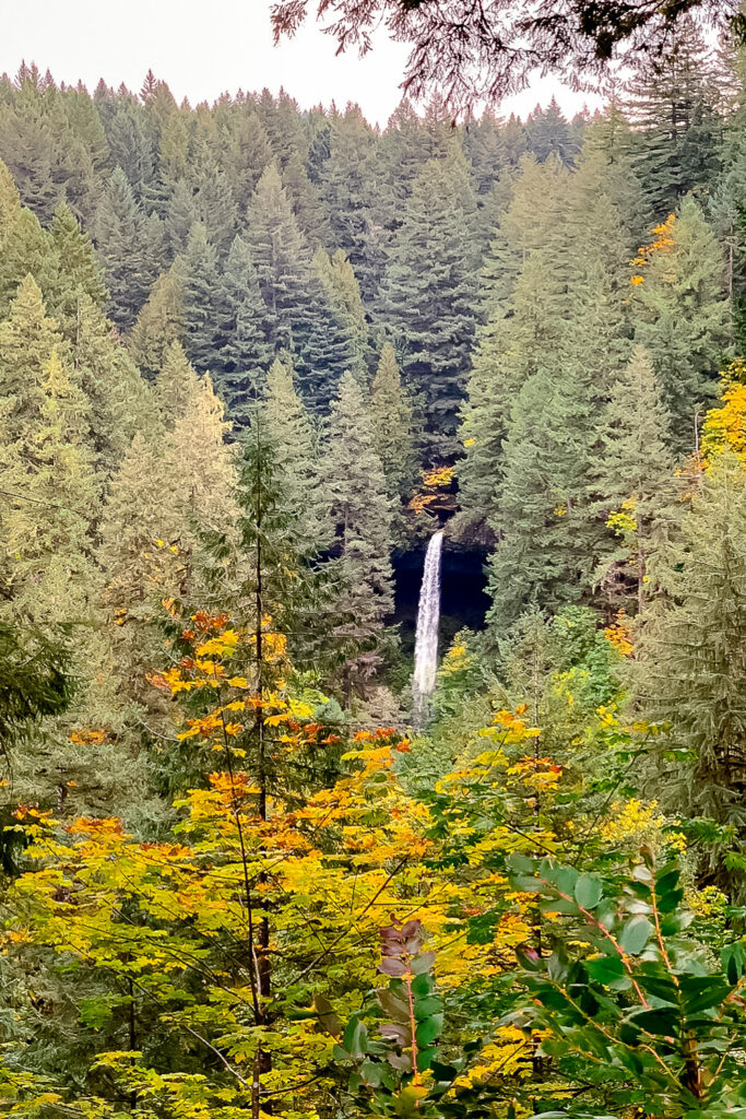 The North Falls Waterfall of the Trail of Ten Falls in Silver Lakes State Park in Oregon