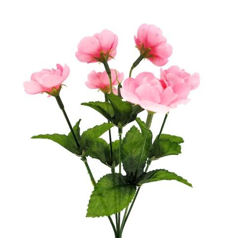 Pink buttercup