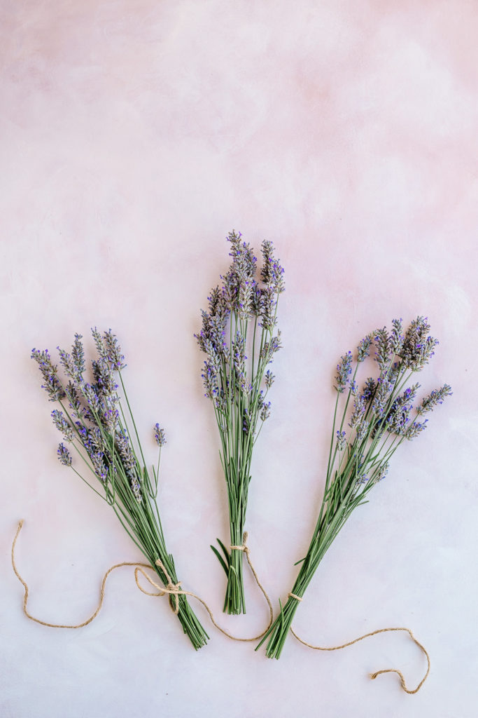 3 bundles of lavender - How to Harvest and Dry Lavender