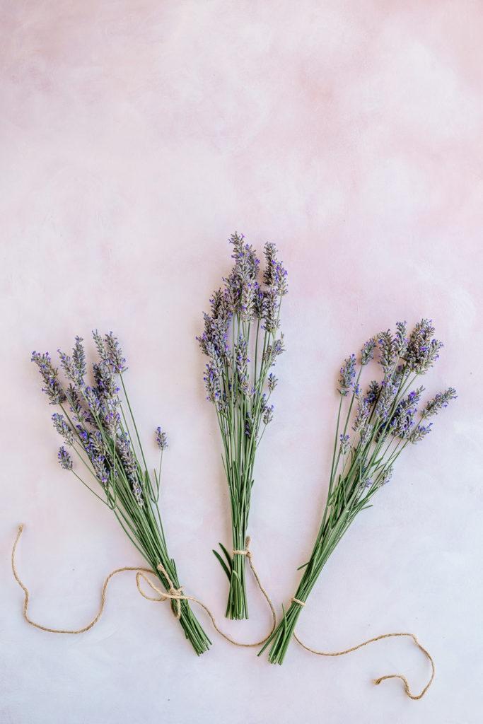3 bundles of lavender - How to Harvest and Dry Lavender