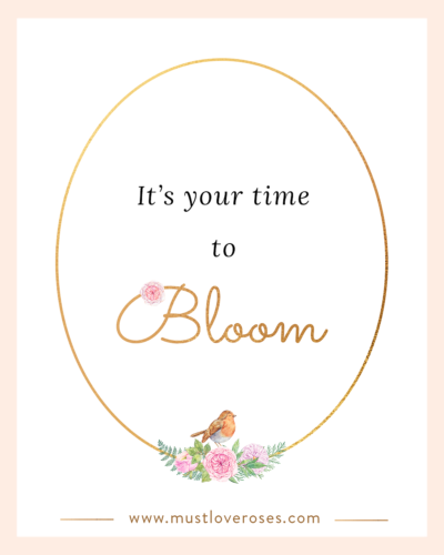 Inspirational Quotes Blooming Series