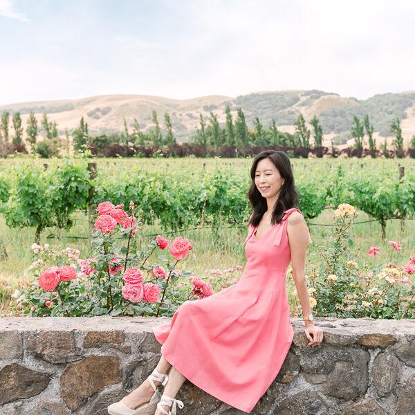 Sonoma Vineyard with Rose Garden