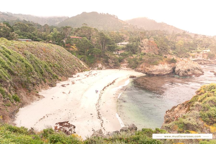 Point Lobos Natural Reserve in Big Sur