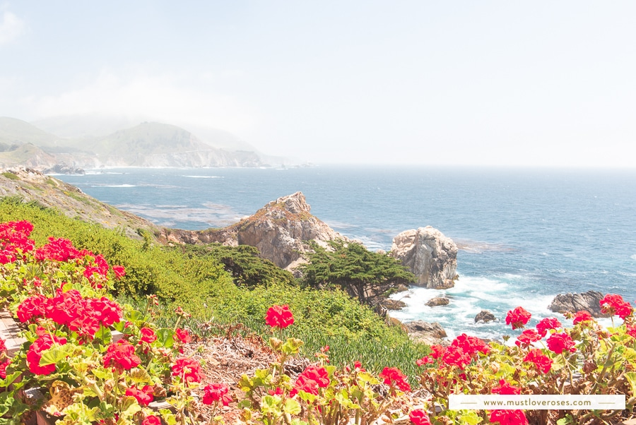 Beautiful Big Sur Coastal Views - Best Spots in Big Sur California