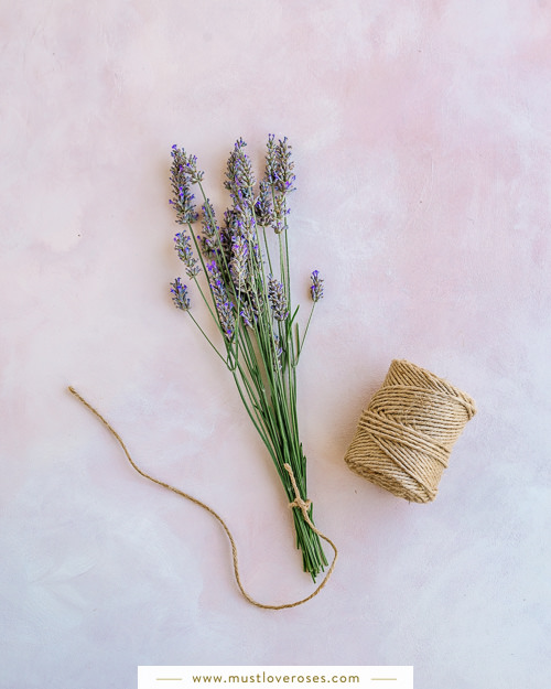 Lavender and twine bundle - How to Harvest and Dry Lavender