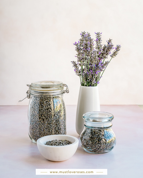 Lars and bowl of lavender - How to Harvest and Dry Lavender