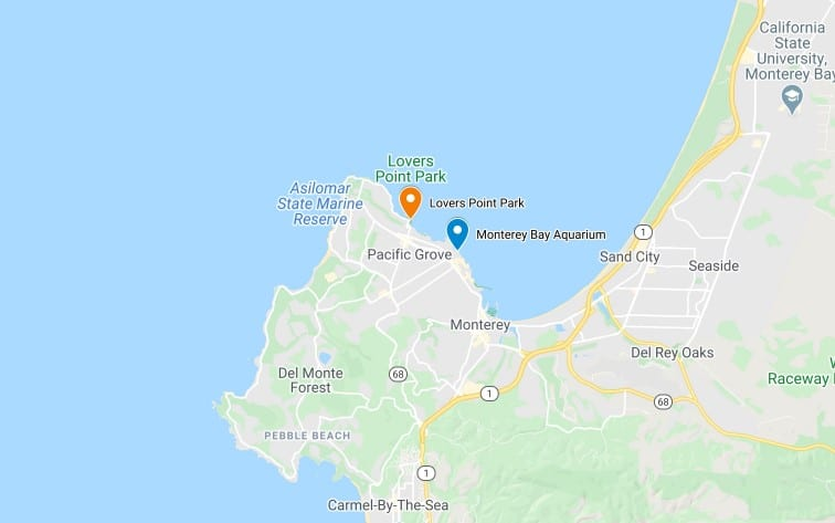 Map of Where to Find Magic Purple Carpet in Pacific Grove
