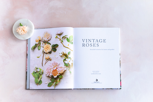 Best Books About Flowers example